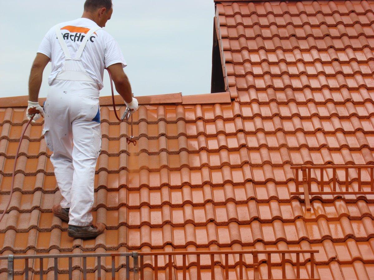 dachpfannen reinigen